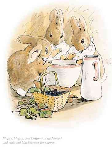 """Flopsy, Mopsy and Cotton-Tail had bread and milk"" by Beatrix Potter"