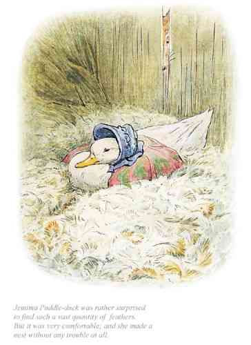 """Jemima was surprised to find a quantity of feathers"" by Beatrix Potter"