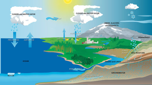 Home Education Water Cycle and Weather-5th July
