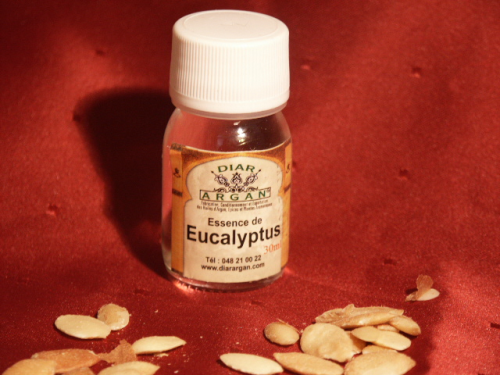 Eukalyptus, 30ml