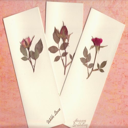 Handmade 3 Pressed Real Rose Cards