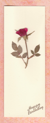Handmade Birthday Card Pressed Real Rose