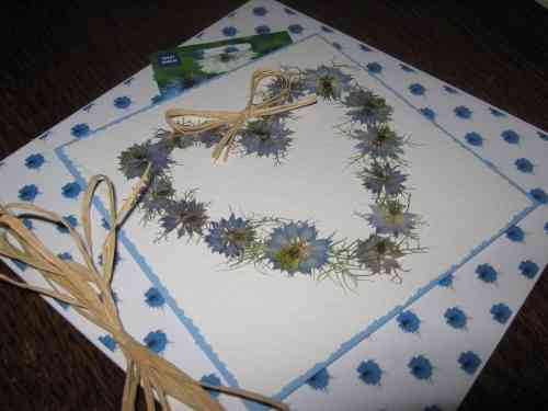 "Luxury Handmade Card - Say it with Flowers ""Love in a Mist with Seeds"""