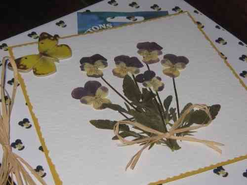 "Luxury Handmade Card - Say it with Flowers ""Heartsease with Seeds"""