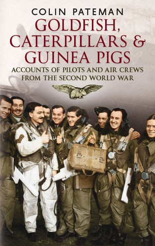 Goldfish Caterpillars & Guinea Pigs: Second World War Aircrew who experienced Life Saving Events