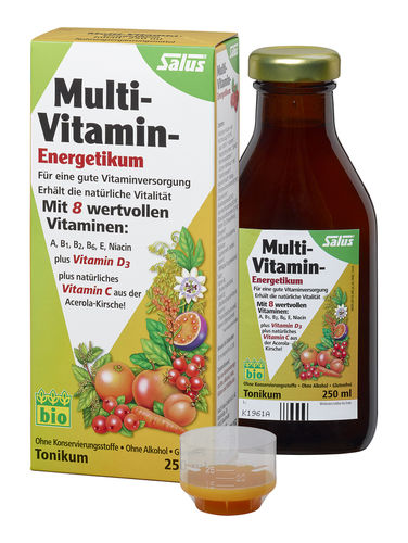SALUS MULTIVITAMIN ENERGETIKUM BIO 250ml