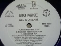 "BIG MIKE ""ALL A DREAM"" (12INCH)"