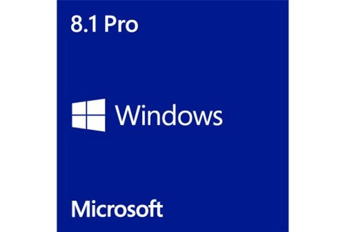 win8.1-professional