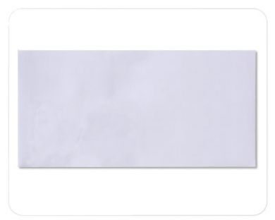 Plain Envelopes White 220mm x 110mm 80 gsm BOX OF 1000