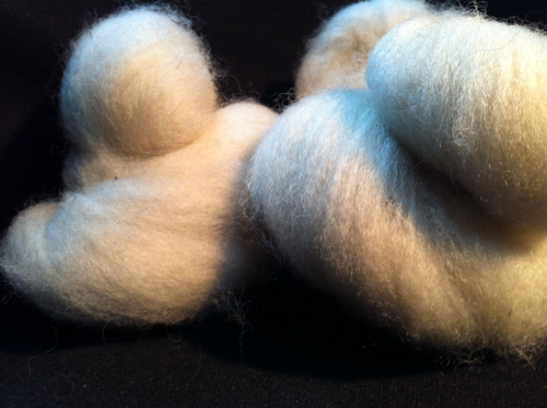 Greyface dartmoor Carded Wool  White undyed