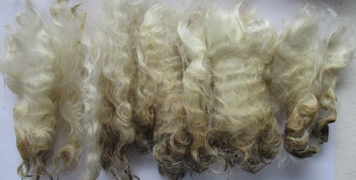 1oz Raw (Unwashed) Wavy Mohair