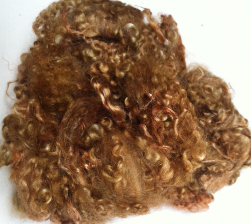 50g Teeswater Loose Fleece in Medium Brown