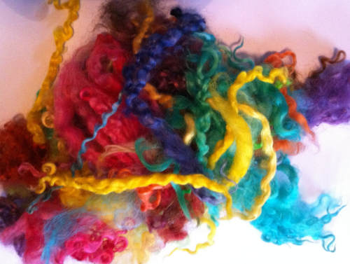 50g Teeswater Loose Fleece in Rainbow Mix