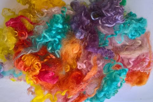 50g Teeswater Loose Fleece in Rainbow