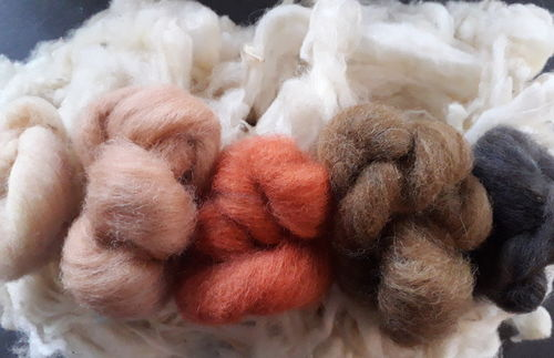 Animal Tones Felting Starter Pack with Loose Fleece