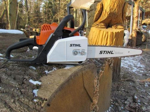 Stihl MS170D Carving