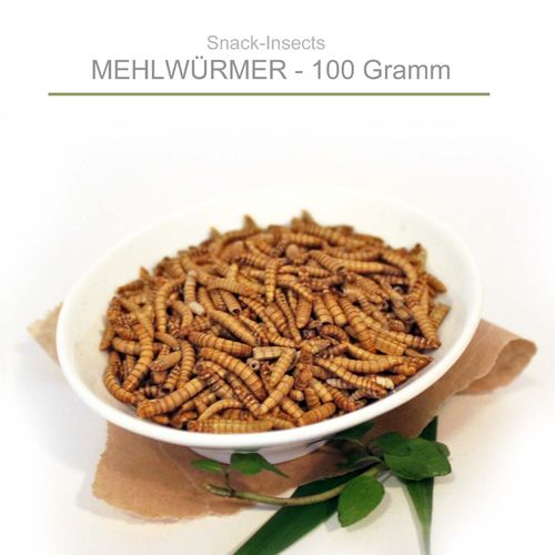 SNACK-INSECTS MEHLWÜRMER - 100 Gramm Pack ►