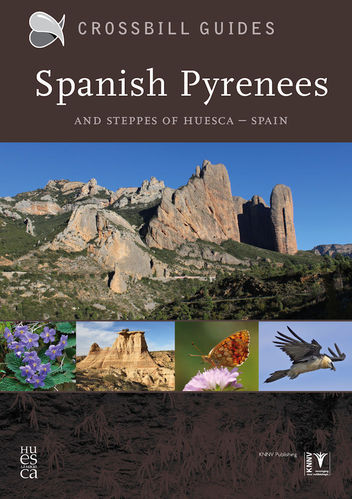 Hilbers: Spanish Pyrenees and Steppes of Huesca