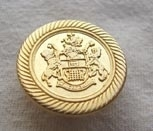 Gold metallic button