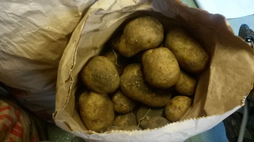 1kg Maris Piper potatoes