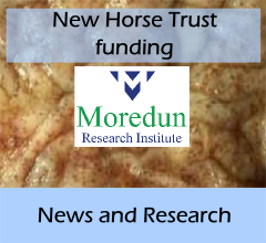 front_news-new_horse_trust_funding_A