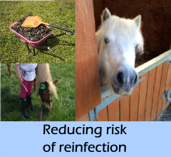 new-reducing_risk