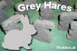Grey Hares