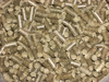 Pellets d'orties piquante - 100g