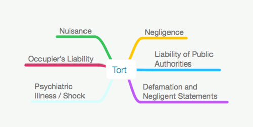 70% OFF Tort Law Full Size Sample Mind Map for Undergraduate LLB/GDL/GE/CILEX