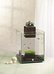 HAGEN FLUVAL 19L CHI FISH TANK AQUARIUM WITH LED LIGHT LATEST VERSION
