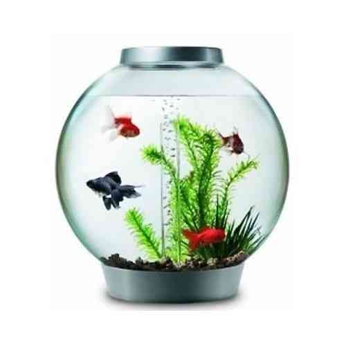 30lt REEF-ONE BI-ORB  WITH LED LIGHTS BABY BI-ORB FISHBOWL SILVER