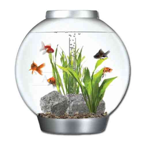 60 lt REEF-ONE BI-ORB  WITH LED LIGHTS BABY BI-ORB FISHBOWL SILVER