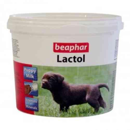 Beapher lactol puppy milk