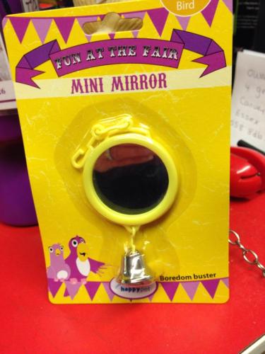 Happy pets fun at the fair mini mirror