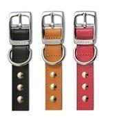 "Ancol Leather Studded Dog Collar 14"""