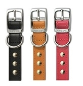 "Ancol Leather Studded Dog Collar 26"""