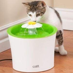 Catit flower fountain for cats
